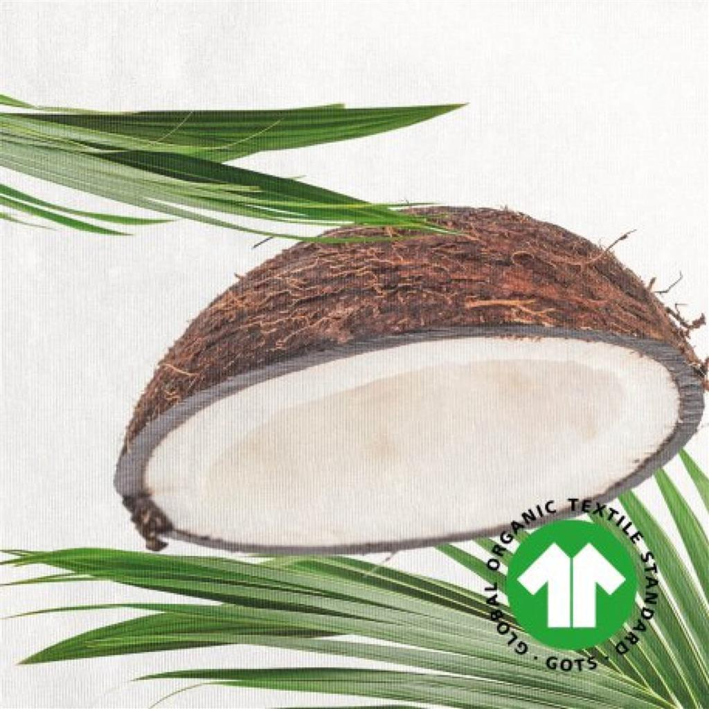 0119040#COCONUT_2.jpeg